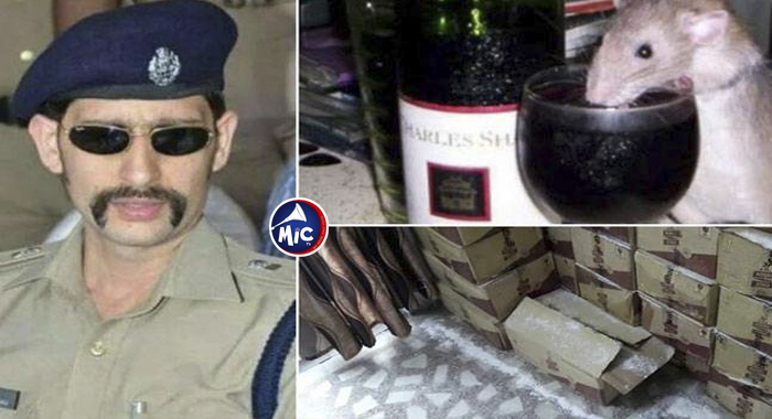 Rats Drink Seized Alcohol In Bihar Police Station.