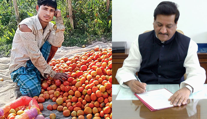 News Channel for Fall in Tomato Prices