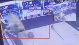 Monkey ATM Broken in Delhi