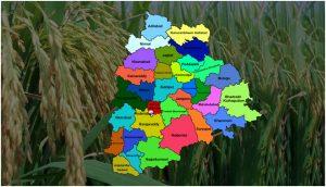 Telangana second plance in grain paddy
