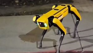 'Amazed and creeped out': Man spots robot dog roaming around Canadian street. Watch