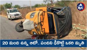 Overload auto hits swain pig in jogulanba gadwal district