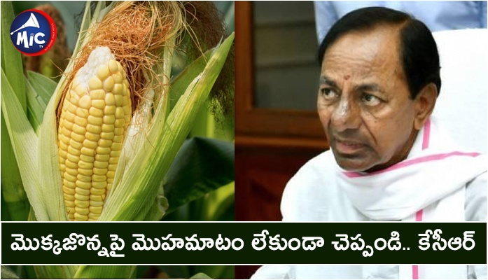Telangana Chief minister KCR on maize crop