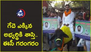 Case Booked on Candidate for Riding Buffalo.jp